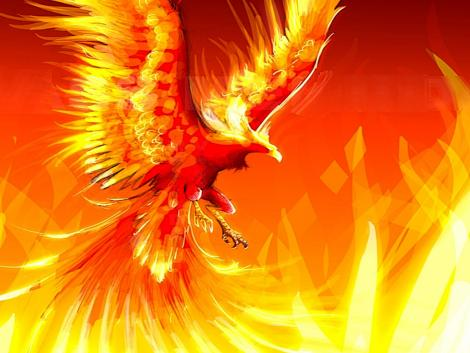 phoenix mythortruth com mythical creatures beasts and facts